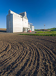 Whitman County, WA<br /> Rosalia grain elevator and silos rise above the furrows of a newly plowed field near the town of Rosalia in the Palouse region of eastern Washington