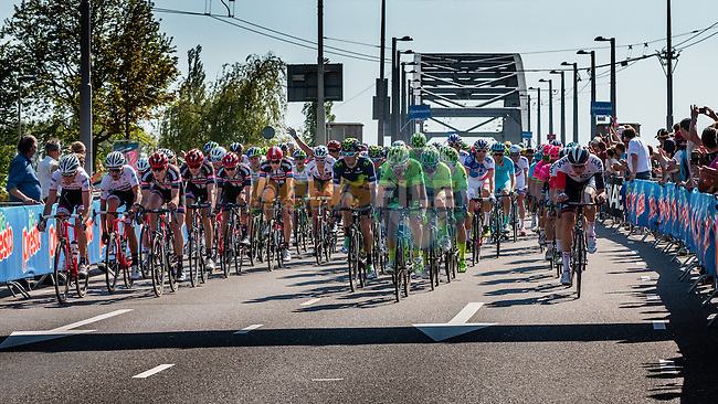 Peloton with Trek - Segafredo (USA), Team Giant - Alpecin (GER), Movistar Team (ESP) and Cannondale Pro Cycling Team (USA) leading at the 1st lap (800M) from the finish line on the Airborneplein, stage 3 from Nijmegen to Arnhem running 190 km of the 99th Giro d'Italia (UCI WorldTour), The Netherlands, 8 May 2016. Photo by Pim Nijland / PelotonPhotos.com | All photos usage must carry mandatory copyright credit (Peloton Photos | Pim Nijland)