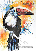 Simon, REALISTIC ANIMALS, REALISTISCHE TIERE, ANIMALES REALISTICOS, paintings+++++LizC_RedBilledToucan,GBWR64,#a#, EVERYDAY