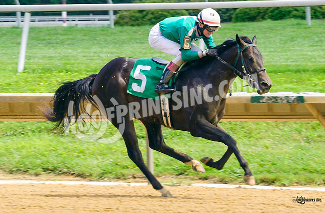 Dads Party winning at Delaware Park on 8/4/16