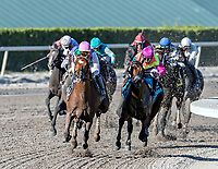 HALLANDALE BEACH, FL - MAR 3:Hofburg #11 trained William I. Mott with Jose Ortiz in the irons overtakes the lead along the final turn on the way to winning the $60,000 Maidens race at Gulfstream Park on March 3, 2018 in Hallandale Beach, Florida. (Photo by Bob Aaron/Eclipse Sportswire/Getty Images)