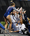 The SEC National Gymnastic Championship was held on Saturday March 24 at Chaifetz Arena on the Saint Louis University campus. Alex McMurtry of Florida gets high-fives from teammates after her performance on the uneven bars.<br />