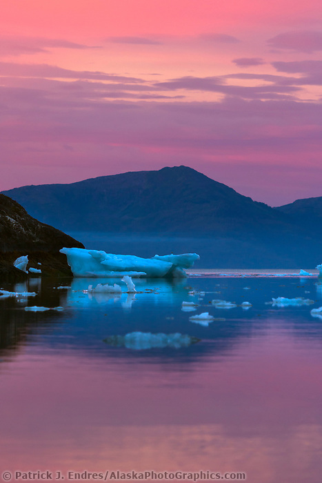 Pink sunrise over floating icebergs in Barry Arm, Prince William Sound, Alaska.