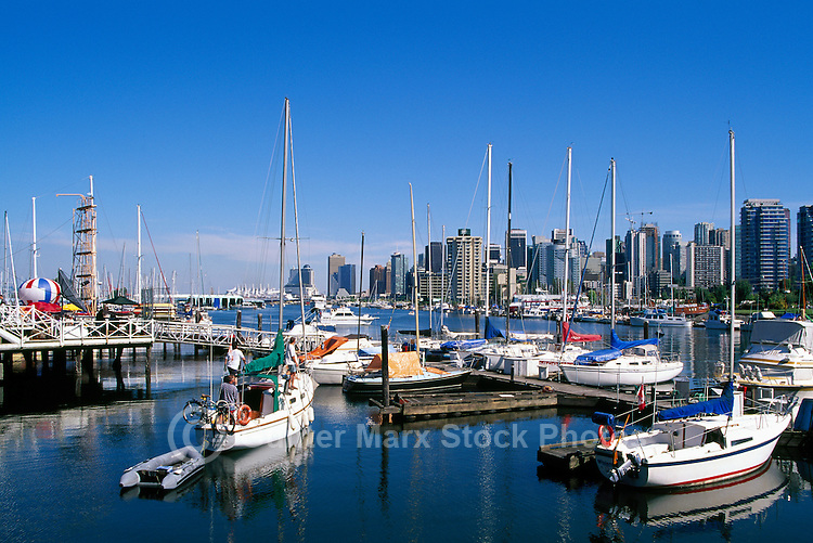 "Vancouver, BC, British Columbia, Canada, - Sailboats and Marina at Rowing Club in ""Coal Harbour"" at Stanley Park"