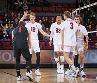 STANFORD, CA - January 17, 2019: Kyle Dagostino, Jordan Ewert, Jaylen Jasper, Paul Bischoff, Stephen Moye at Maples Pavilion. The Stanford Cardinal defeated UC Irvine 27-25, 17-25, 25-22, and 27-25.