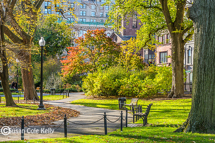 Autumn in the Boston Public Garden, Boston, Massachusetts, USA