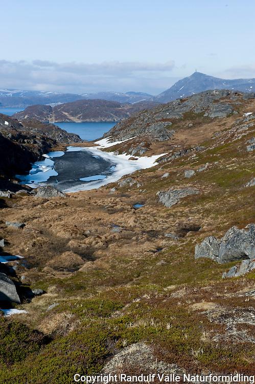 Lite tjern med mørk våris på Seiland. Kvaløya med Tyven og Storfjellet i bakgrunnen. ---- Small pond on the island Seiland.