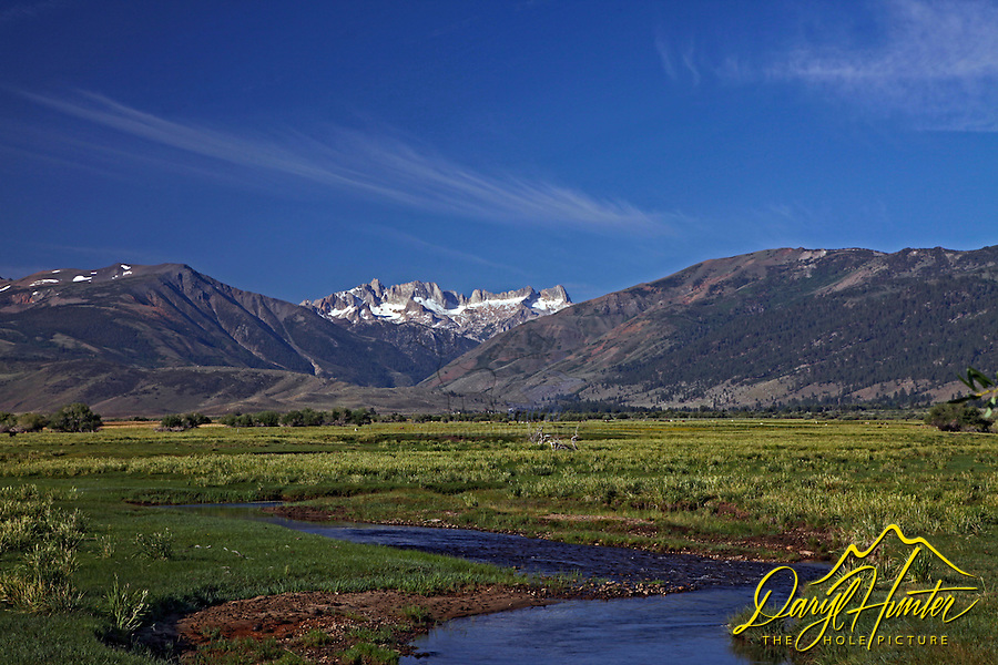 Sierra Nevada Range, Bridgeport, California