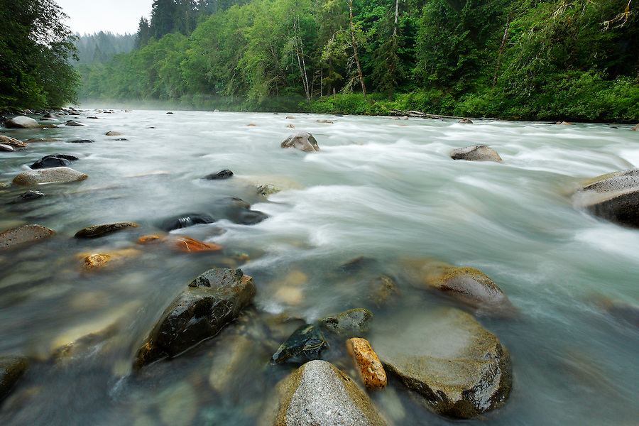 Stillaguamish River near Verlot Campground, Mt Baker Snoqualmie National Forest, Washington, USA