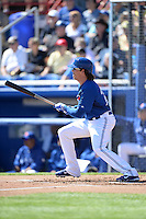 Toronto Blue Jays outfielder Colby Rasmus (28) during a spring training game against the Pittsburgh Pirates on February 28, 2014 at Florida Auto Exchange Stadium in Dunedin, Florida.  Toronto defeated Pittsburgh 4-2.  (Mike Janes/Four Seam Images)