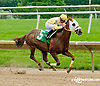 OK Nothanksforaskn winning at Delaware Park racetrack on 6/19/14