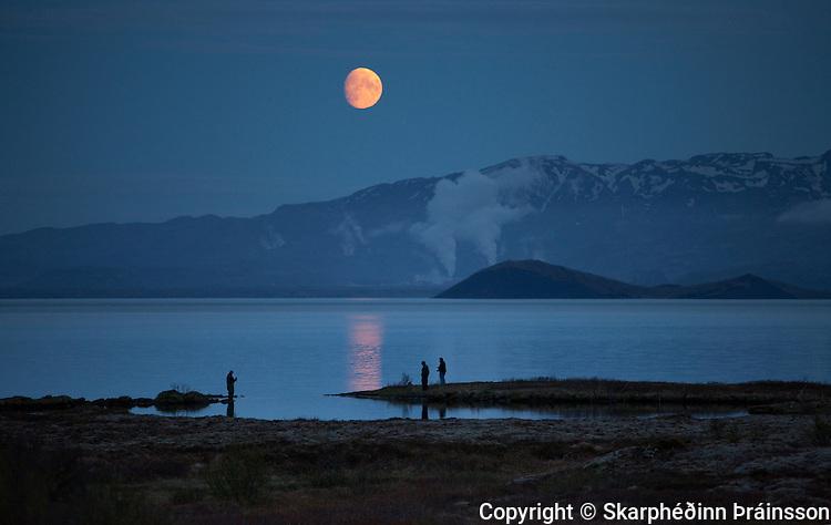 Fishing under a blue moon. Lake Þingvallavatn, Þingvellir national park, south west Iceland
