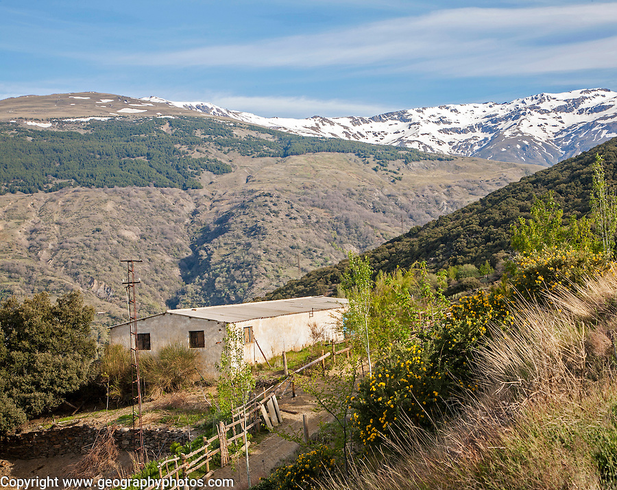 Snow capped Sierra Nevada Mountains, High Alpujarras, near Capileira, Granada Province, Spain