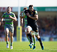 Exeter Chiefs' Don Armand in action during todays match<br /> <br /> Photographer Bob Bradford/CameraSport<br /> <br /> Aviva Premiership Play-Off Semi Final - Exeter Chiefs v Newcastle Falcons - Saturday 19th May 2018 - Sandy Park - Exeter<br /> <br /> World Copyright &copy; 2018 CameraSport. All rights reserved. 43 Linden Ave. Countesthorpe. Leicester. England. LE8 5PG - Tel: +44 (0) 116 277 4147 - admin@camerasport.com - www.camerasport.com