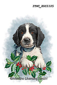 Marcello, CHRISTMAS ANIMALS, WEIHNACHTEN TIERE, NAVIDAD ANIMALES, paintings+++++,ITMCEDC1125,#xa# ,sticker,stickers ,dog,dogs
