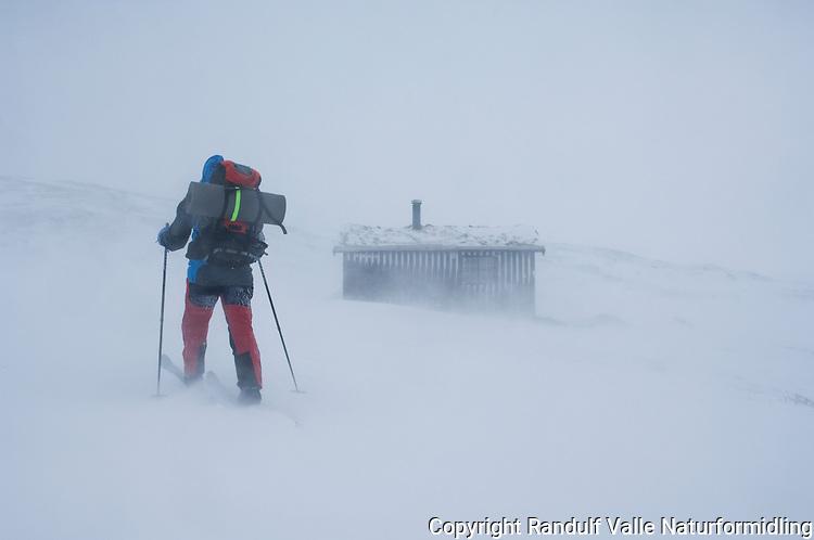 Person utenfor hytte i sterk vind og snødrev. ---- Person outside cabin in wind and snow.