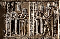 Hieroglyphs, The Temple of Kom-Ombo, near Aswan, Egypt