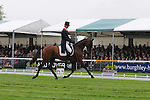 William Fox Pitt riding Seacookie during the Dressage phase of the 2012 Land Rover Burghley Horse Trials in Stamford, Lincolsnhire