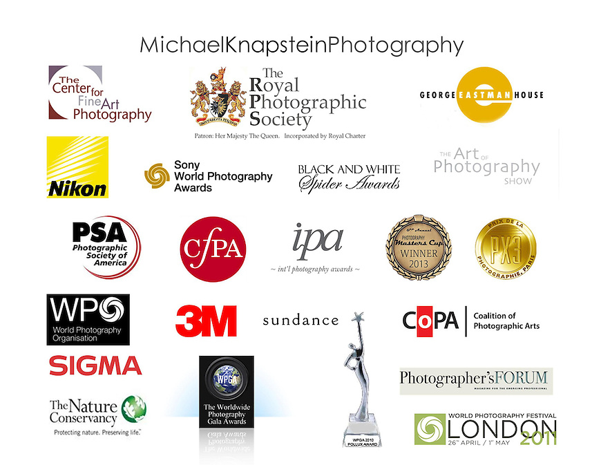 Royal Photographic Society, Photography Master's Cup, Black and White Spider Awards, Prix de la Photographie Paris, World Photography Organization, International Photography Awards, Worldwide Photography Gala Awards, World Photography Festival, Sony World Photography Awards, George Eastman House, Center for Photographic Art, Center for Fine Art Photography