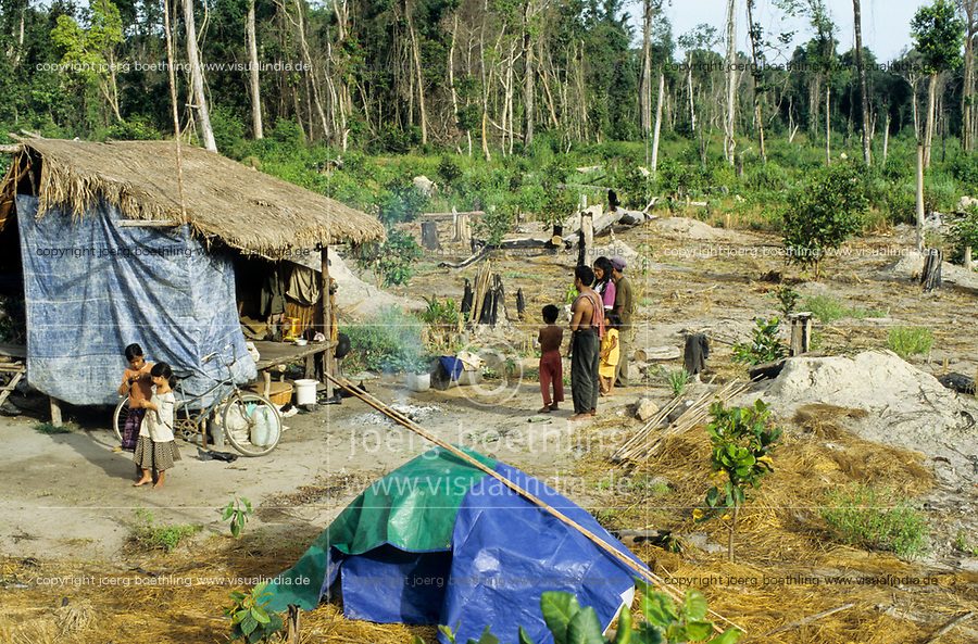 CAMBODIA, Mekong region, Stung Treng, logging of rainforest, cleared and burned forest, poor people settle on deforested plots and start farming, the land belongs often to army generals