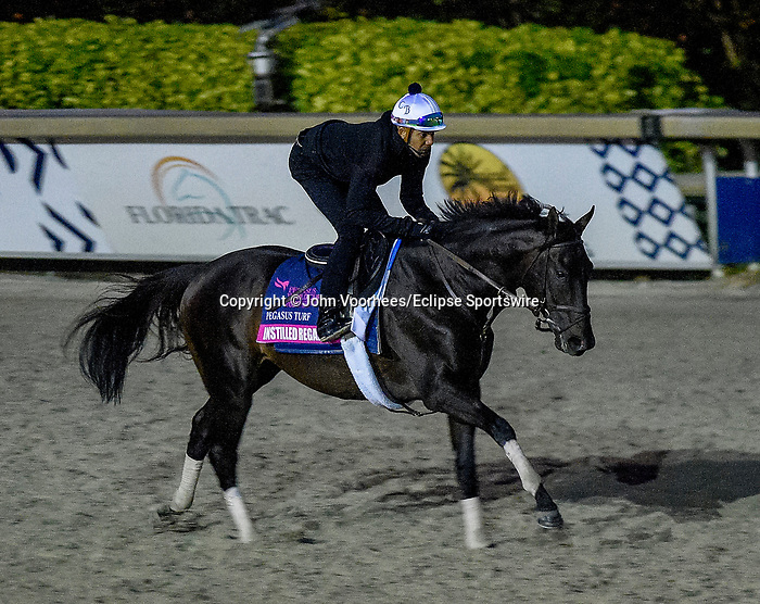 January 23, 2020: Instilled Regard jogs on the main track as horses prepare for the Pegasus World Cup Invitational at Gulfstream Park Race Track in Hallandale Beach, Florida. John Voorhees/Eclipse Sportswire/CSM
