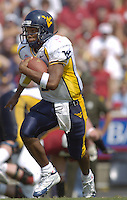 17 September 2005:  West Virginia QB Pat White (5)..West Virginia defeated Maryland 31-19 at Byrd Stadium in College Park, MD.