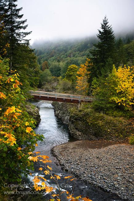 Wilson river footbridge, Tillamook State Forest, Oregon