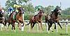 Cash Crop winning at Delaware Park on 9/24/14