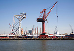 Cranes line waterside wharf Ballast Nedam company, Port of Rotterdam, Netherlands