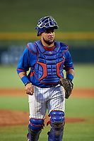 AZL Cubs 2 catcher Alexander Guerra (44) during an Arizona League game against the AZL Reds on July 23, 2019 at Sloan Park in Mesa, Arizona. AZL Cubs 2 defeated the AZL Reds 5-3. (Zachary Lucy/Four Seam Images)