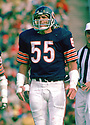 Chicago Bears Doug Buffone (55) during a game from his 1974 season with the Chicago Bears. Doug Buffone played for 14 season, all with the Bears.(SportPics)