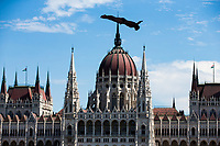 Picture by Rogan Thomson/SWpix.com - 30/07/2017 - High Diving - Fina World Championships 2017 -  Batthyany Ter, Budapest, Hungary - Michal Navratil of the Czech Republic in action during the Final of the Men's High Dive competition.