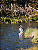 Man flyfishing, wading in river