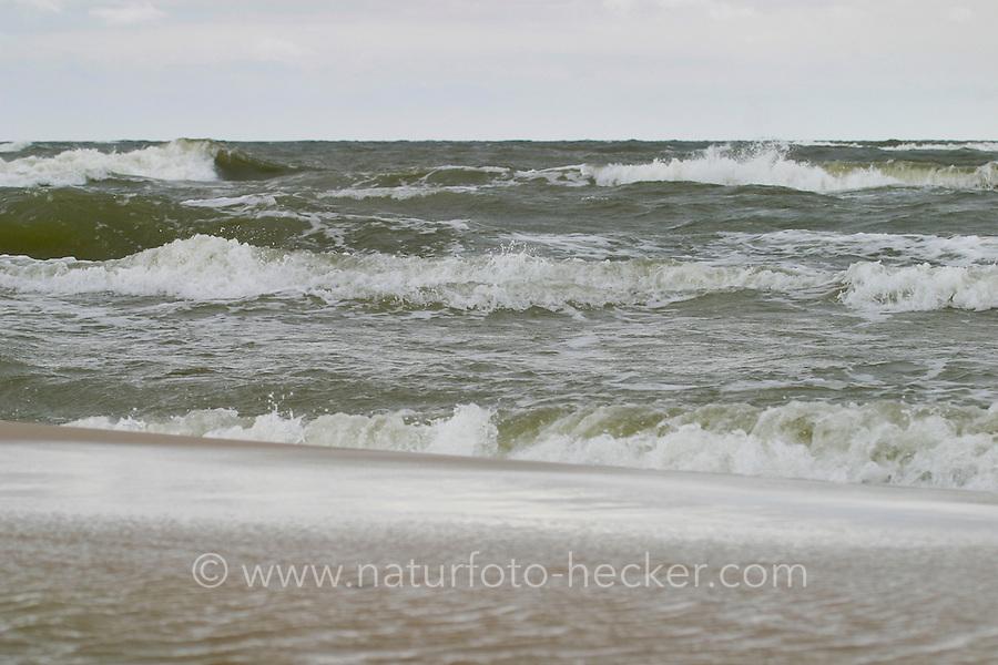 Wellen, Brandung und Gischt an der Ostsee