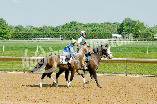 Making Waves before The Beautiful Day Stakes at Delaware Park on 5/31/12