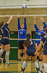 1 November 2015: Yeshiva University Maccabee Setter, Defensive Specialist, and team co-Captain Aliza Muller (left), a Senior from Los Angeles, CA, and Middle Blocker Marissa Almoslino, a Junior from Seattle, WA, attempt a block against the Saint Joseph College Bears at SUNY Old Westbury in Old Westbury, NY. The Bears shut out the Maccabees 3-0 in NCAA women's volleyball, Skyline Conference play. Mandatory Credit: Ed Wolfstein Photo *** RAW (NEF) Image File Available ***