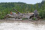 Dawson City, The Yukon Territory, Canada, On the Yukon River,paddle wheeler wreck
