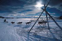 R Brooks Mushes on Trail to UNK 2000 Iditarod AK