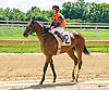 Balharbour Miss winning at Delaware Park on 9/7/16