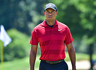 Bethesda, MD - July 1, 2018: Tiger Woods walks to the next hole during final round of professional play at the Quicken Loans National Tournament at TPC Potomac at Avenel Farm in Bethesda, MD.  (Photo by Phillip Peters/Media Images International)