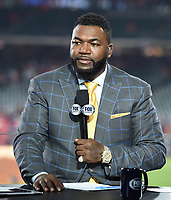 HOUSTON - OCTOBER 23: David Ortiz at World Series Game 2: Washington Nationals at Houston Astros on Fox Sports at Minute Maid Park on October 23, 2019 in Houston, Texas. (Photo by Frank Micelotta/Fox Sports/PictureGroup)