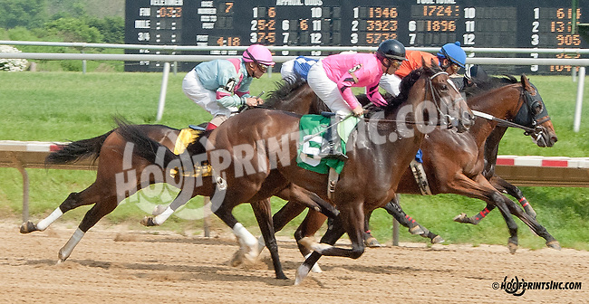 Makayla's Angel winning at Delaware Park on 5/22/13