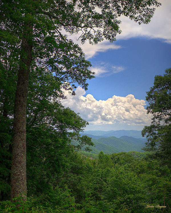 View of the Great Smoky Mountains through a gap in the trees along Highway 441. HDR image made from 3 separate exposures.