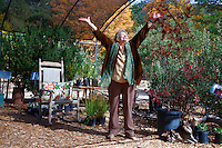 Bronwyn Jones at her outdoor nursery, Lily Rock Native Gardens