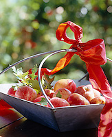 A metal basket filled with apples is decorated with a red ribbon