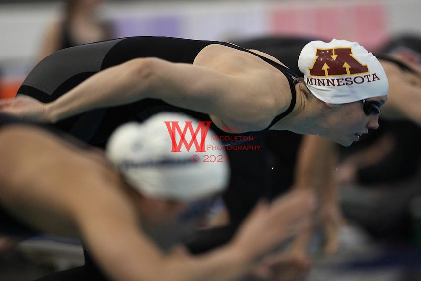 2009 Big Ten Swimming & Diving Championships