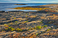 Rocky landscape on the Atlantic Ocean, Blue Rocks, Nova Scotia, Canada