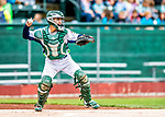 25 July 2017: Vermont Lake Monsters catcher Iolana Akau in action against the Tri-City ValleyCats at Centennial Field in Burlington, Vermont. The Lake Monsters defeated the ValleyCats 11-3 in NY Penn League action. Mandatory Credit: Ed Wolfstein Photo *** RAW (NEF) Image File Available ***