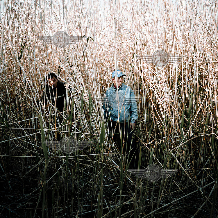Afghan refugees hide in long grass beside the national road to try to hide in one of them. Patras is home to about 3,000 illegal immigrants. Most of them are Afghans, although there are also some Iranians and Uzbeks. They stop in Patras to try and find passage to various European destinations by hiding in ships, containers and trucks parked in the port. If they are lucky they will make it to their destination. Many of them live in shacks made from cartons, plastic and wood they found on the beach. To shelter from the cold they also squat in abandoned buildings, living without water and electricity. The living conditions are inhumane and unhygienic.