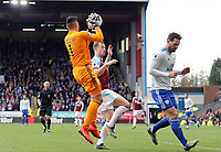 Cardiff City's Neil Etheridge gathers under pressure from Burnley's Ashley Barnes<br /> <br /> Photographer Rich Linley/CameraSport<br /> <br /> The Premier League - Saturday 13th April 2019 - Burnley v Cardiff City - Turf Moor - Burnley<br /> <br /> World Copyright © 2019 CameraSport. All rights reserved. 43 Linden Ave. Countesthorpe. Leicester. England. LE8 5PG - Tel: +44 (0) 116 277 4147 - admin@camerasport.com - www.camerasport.com